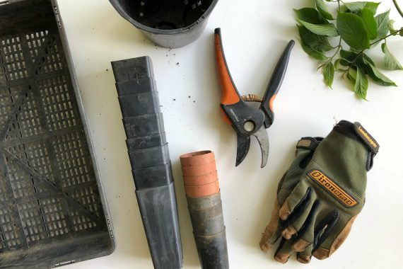 Different Gardening Tools